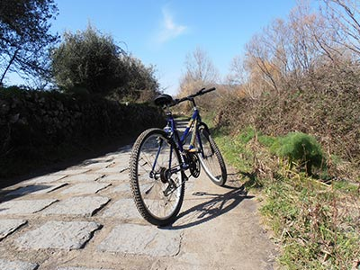 Cycling excursions Sicily